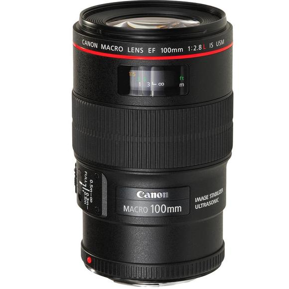 Canon EF 100mm f/2.8L Macro IS USM   - 1